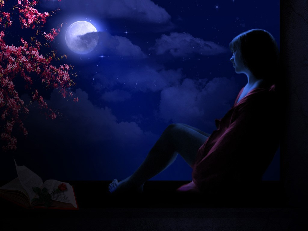 a moonlit night essay