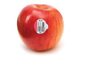 grt-ma11-apple-i